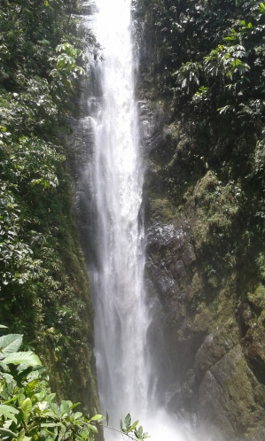 Epic waterfall hidden in the rain forest. Great start to the trip!